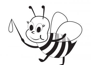 Découvre le monde des abeilles!